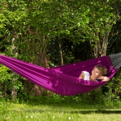 Hammock FLORIDA, Berry